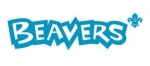 newbeavers2015
